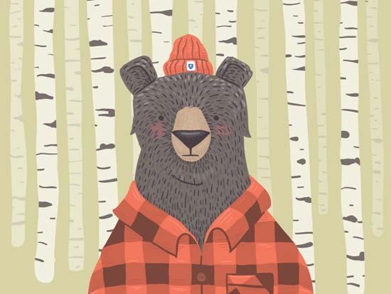 Bear-Illustration-01
